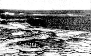 Elliptical crater swamps